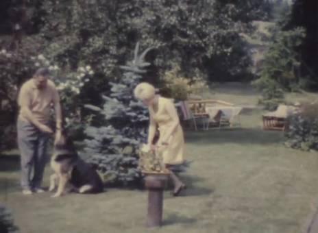 Im Garten mit Hund