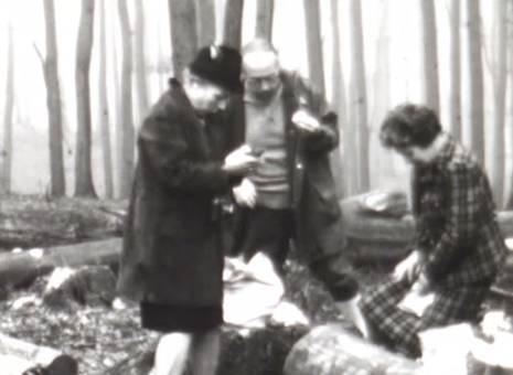 Die Kamera im Wald