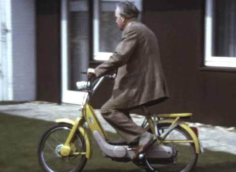 Moped im Garten