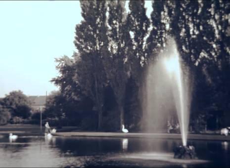 Springbrunnen und Schwäne