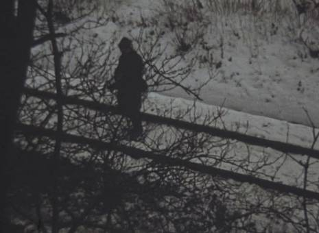 Jagd im Winter