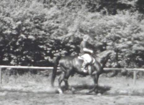 Mein Pferd mit Reitlehrer