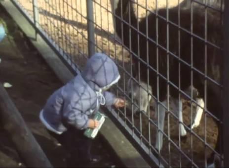 Tierpark Siegelbach