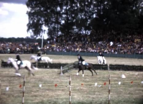 Pferdeshow im Mersfelder Bruch