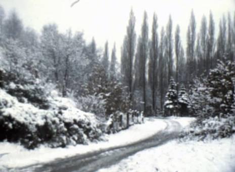 Winter in Düsseldorf