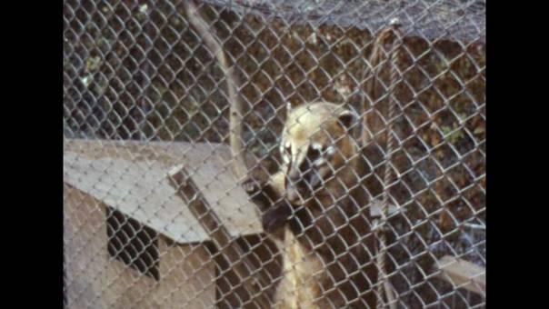 Märchenland Tierpark