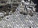 Ruinen am Petersberg
