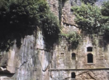 Burgen in der Pfalz